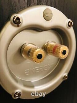 C3 Energy Speaker Systems Connoisseur Series C-3 En Très Bon État Testé